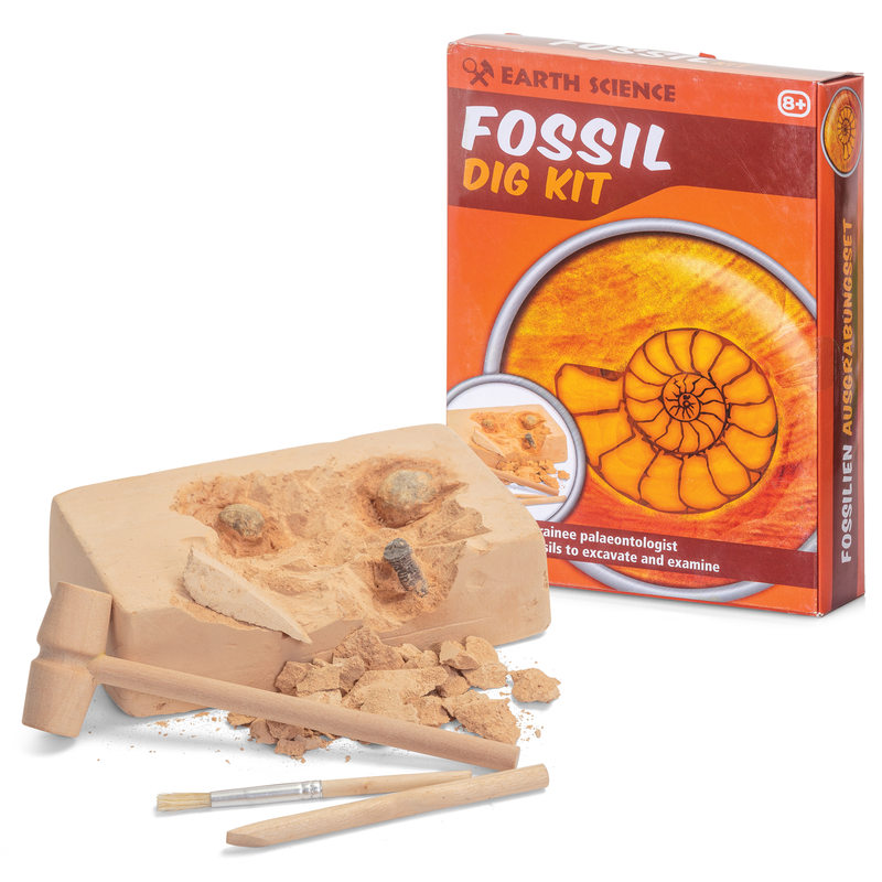 Fossil Dig Kit | Toys | Toy Street UK