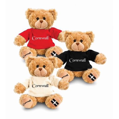 18cm Cornwall Hug Me Bear White