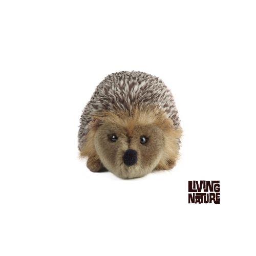Hedgehog Medium