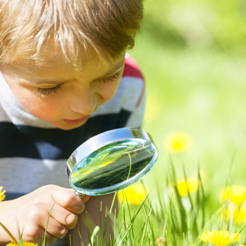 Nature-Based Learning Activities