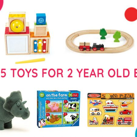 Top 5 Toys for 2 Year Old Boys